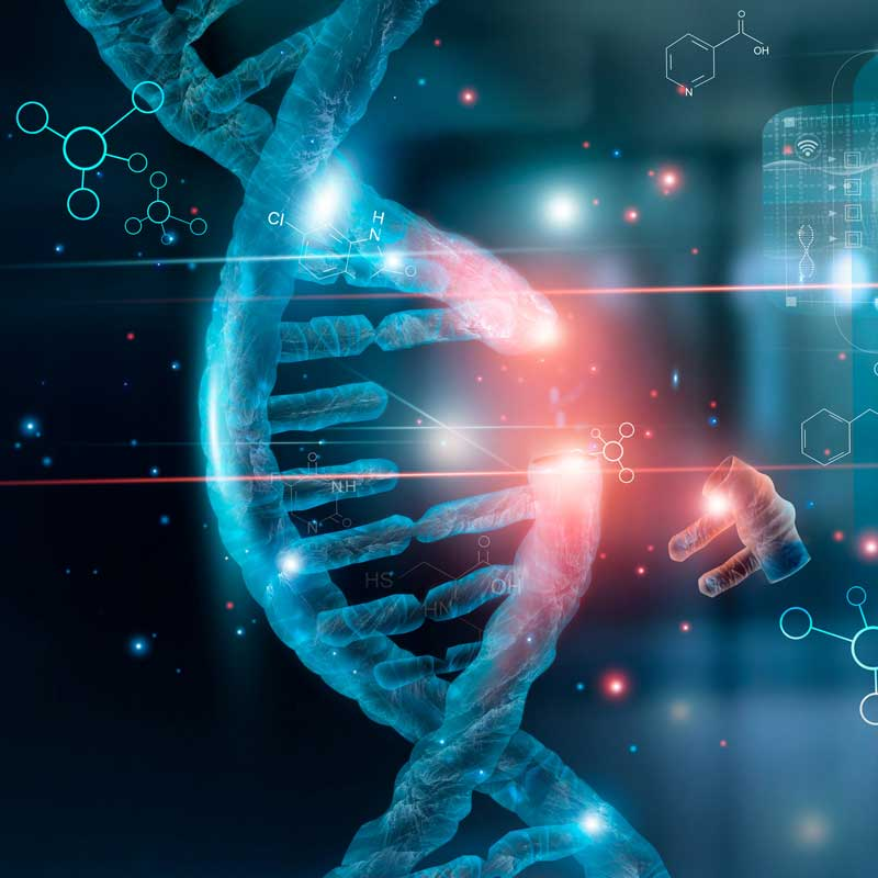 Image of DNA helix - showing how thymine dimerization can eliminate pathogens